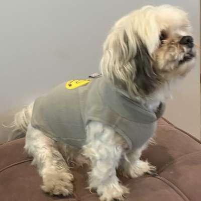 Cozy Fleece Profile Picture